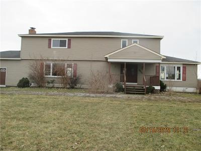 Genesee County Single Family Home A-Active: 8620 Vallance Road