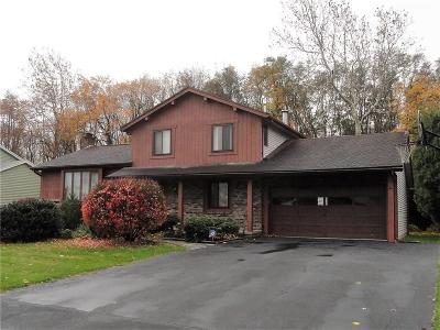 Rochester Single Family Home C-Continue Show: 256 Northwood Drive