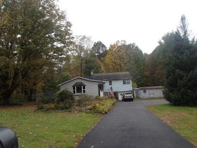 Single Family Home A-Active: 1669 County Route 57