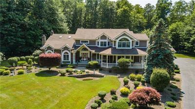 Rochester Single Family Home A-Active: 55 Pine Creek Lane