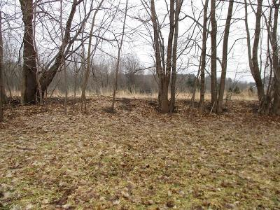 Mendon Residential Lots & Land A-Active: 978 West Bloomfield Road