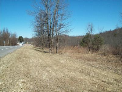 Residential Lots & Land A-Active: Route 21 N Road