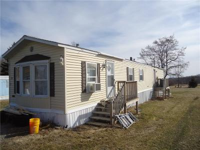 Genesee County Single Family Home A-Active: 7273 Morrow Road