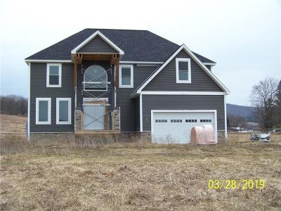 Allegany NY Single Family Home For Sale: $450,000