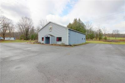 Commercial For Sale: 5286 State Route 14