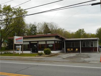 Commercial For Sale: 1658 Rochester Street