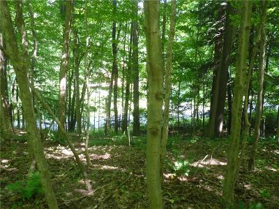 Chautauqua County Residential Lots & Land For Sale: Wells Bay Road