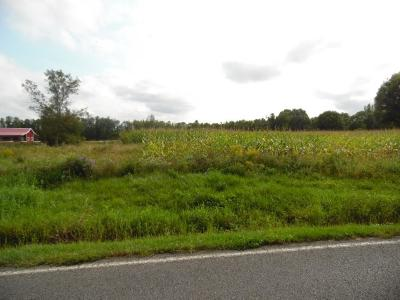 Seneca Falls NY Farm & Ranch For Sale: $36,500