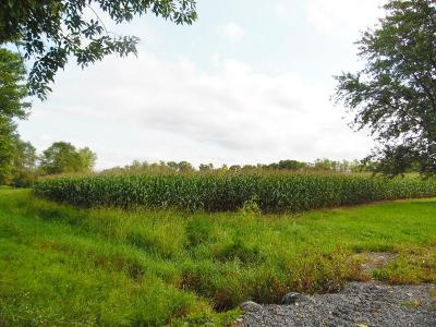 Seneca Falls NY Farm & Ranch For Sale: $68,400