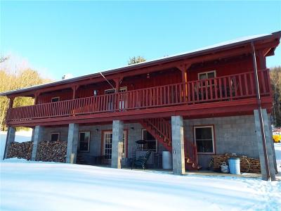 Allegany Single Family Home A-Active: 2454 North Nine Mile Road