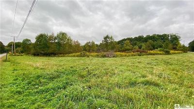 Mayville NY Residential Lots & Land A-Active: $92,000