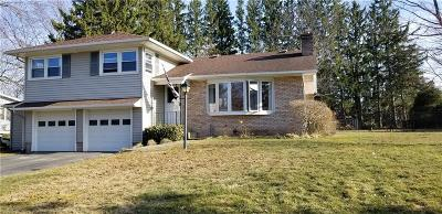 Albion Single Family Home A-Active: 20 Meadowbrook Drive