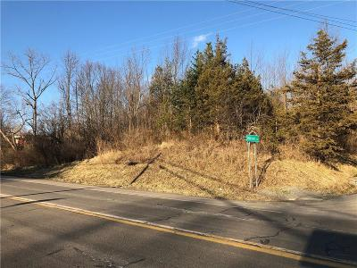 Residential Lots & Land For Sale: 00 State Route 364