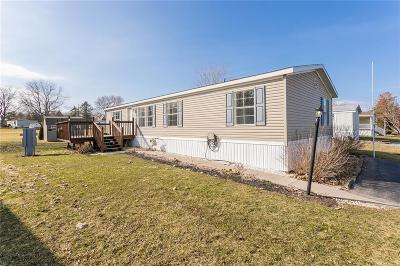 Manchester Single Family Home Active Under Contract: 246 White Spruce Lane