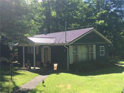 Allegany County, Cattaraugus County Single Family Home A-Active: 5 Scotch Pine Drive, Dry Brook Road