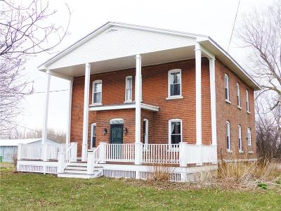 Waterloo Single Family Home For Sale: 217 State Route 414