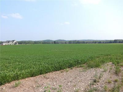 Mendon Residential Lots & Land For Sale: 453 Taylor Road