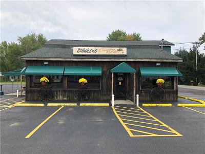 Lakewood NY Commercial A-Active: $499,900