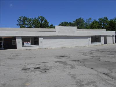 Commercial For Sale: 7273 W Main Road