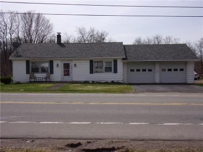 Stockton Single Family Home For Sale: 7387 Route 380