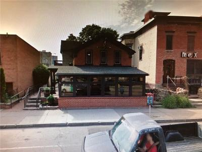 Monroe County Commercial For Sale: 293 Alexander Street