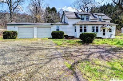 Chautauqua County Single Family Home U-Under Contract: 5521 Summit Avenue