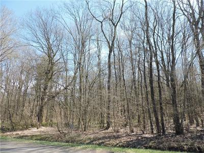 Chautauqua County Residential Lots & Land A-Active: Nutt Road
