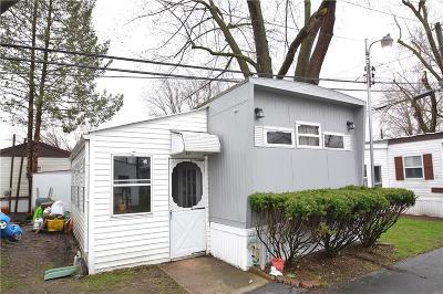 Rochester Single Family Home A-Active: 1531 Buffalo Road