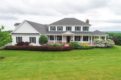 Canandaigua Single Family Home A-Active: 5081 State Route 21 South Road