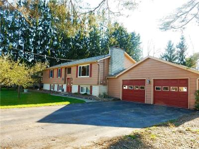 Single Family Home For Sale: 20 Cherry Lane