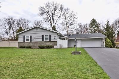 Rochester Single Family Home A-Active: 43 Brush Hollow Rd Road