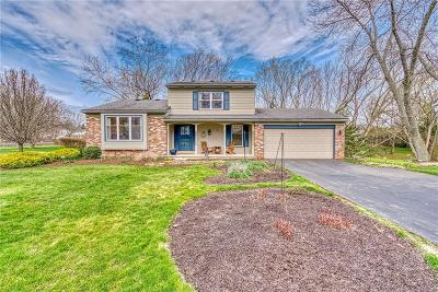 Rochester Single Family Home A-Active: 228 Applewood Drive