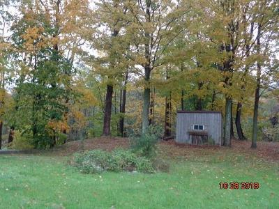 Chautauqua County Residential Lots & Land A-Active: 10138 Creek Road