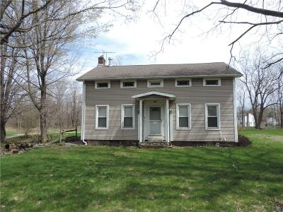 Rochester Single Family Home A-Active: 816 North Greece Road