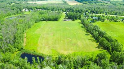 Orleans County Residential Lots & Land For Sale: 17071 Ridge Road