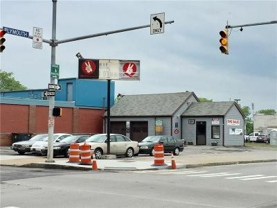 Monroe County Commercial For Sale: 102 Brown Street