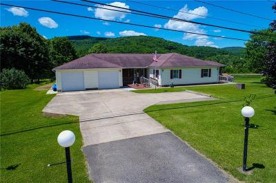 Allegany Single Family Home For Sale: 3203 Five Mile Road
