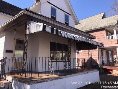 Rochester Single Family Home For Sale: 429 Glenwood Avenue