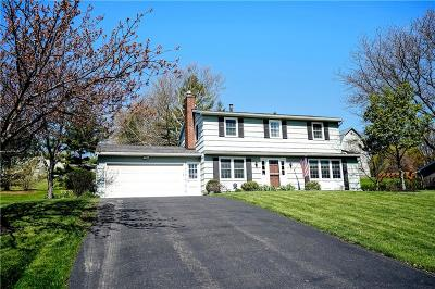 Pittsford Single Family Home A-Active: 41 Northfield Gate