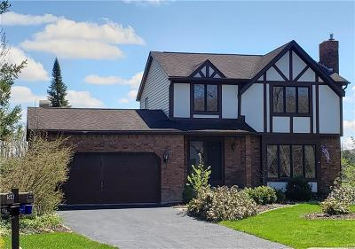 Amherst Single Family Home A-Active: 56 Little Robin Road