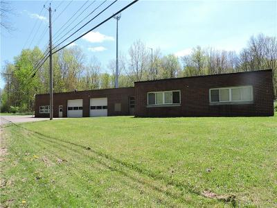 Chautauqua County Commercial A-Active: 185 E Livingston Avenue