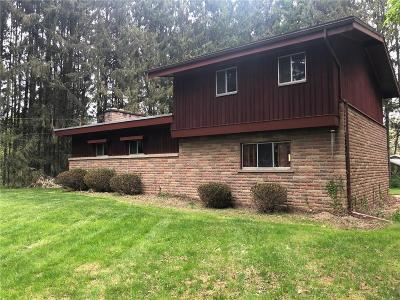 Allegany Single Family Home For Sale: 2216 Saint Christopher Drive