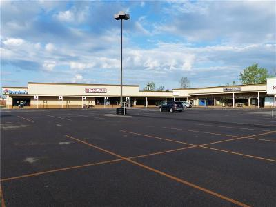 Commercial Lease For Lease: 2109 Us Route 20