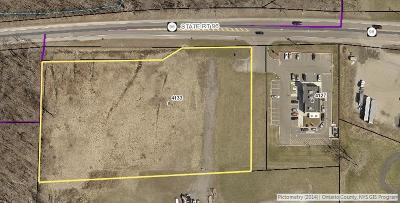 Residential Lots & Land A-Active: 4133 State Route 96
