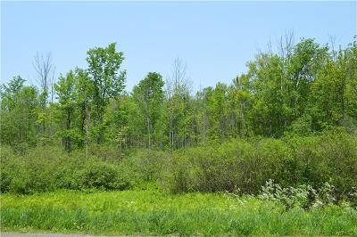 Chautauqua County Residential Lots & Land For Sale: Maple Springs-Ellery Road