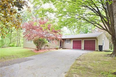 Pittsford Single Family Home For Sale: 255 East Street