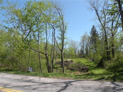 Webster Residential Lots & Land A-Active: 1309 Lake Road