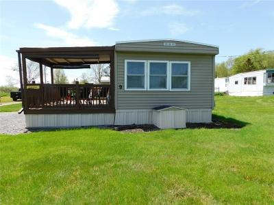 Single Family Home A-Active: Lot # 9 Snug Harbor Mobile Home Park