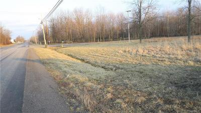 Orleans County Residential Lots & Land For Sale: 10880 Millers Road