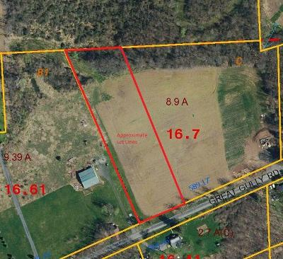Residential Lots & Land A-Active: 001 Great Gully Road